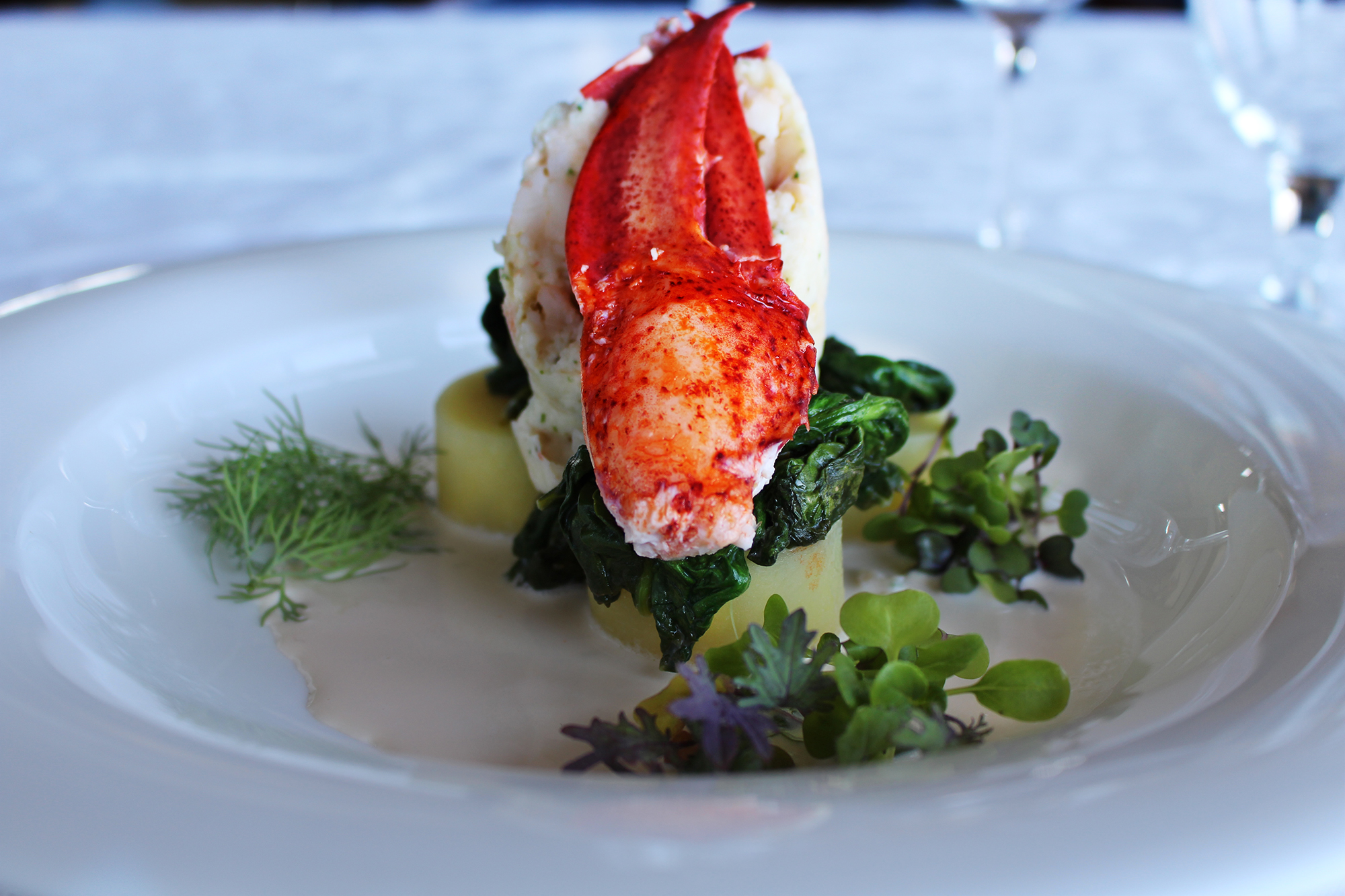 Lobster Timbal - resized