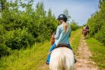 Fox Harb'r Resort horseback trail rides forest trail
