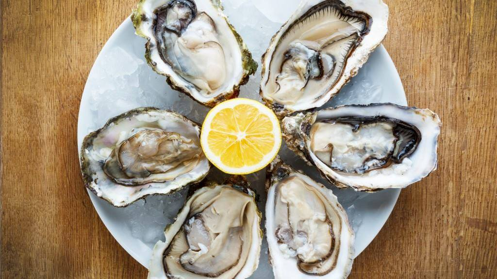 Nova Scotia grows some very special oysters. And the Malagash oysters farmed just minutes from Fox Harb'r Resort are among the very best.